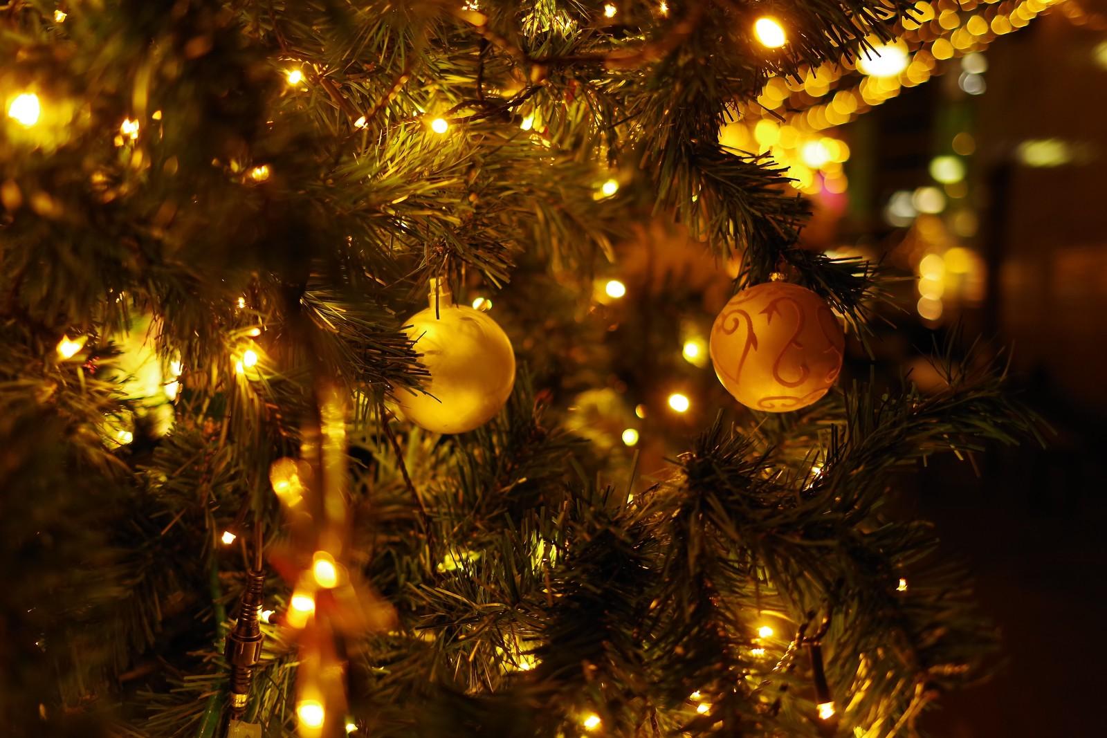 「静岡県浜松市 不倫調査] クリスマスは不倫相手とXX